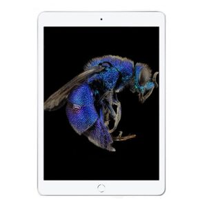 Apple iPad Air 3(2019) 3GB/256GB